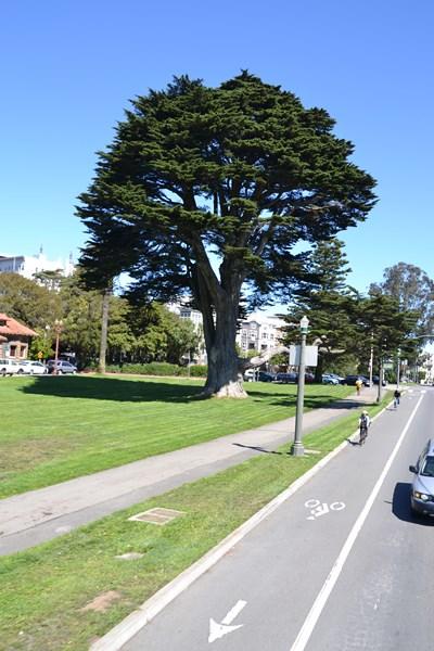 San Francisco Father-Son Trip 9-2013 (613) [800x600]