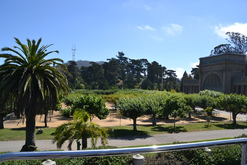 San Francisco Father-Son Trip 9-2013 (621) [800x600]