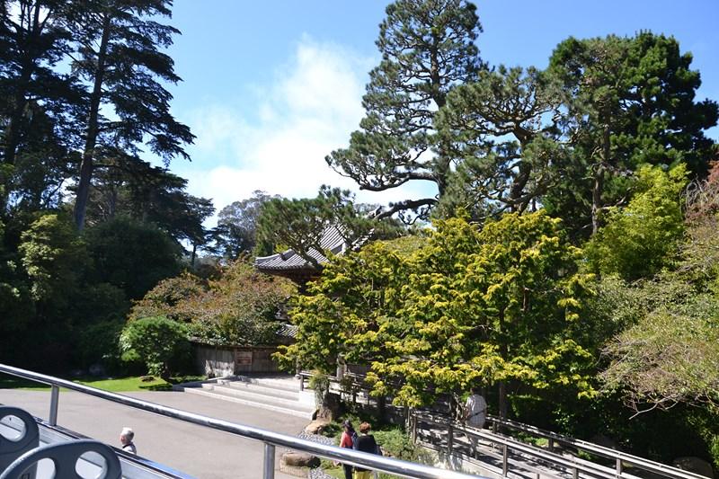 San Francisco Father-Son Trip 9-2013 (623) [800x600]