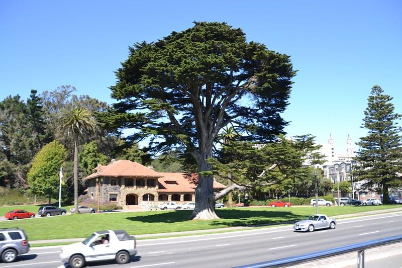 San Francisco Father-Son Trip 9-2013 (630) [800x600]