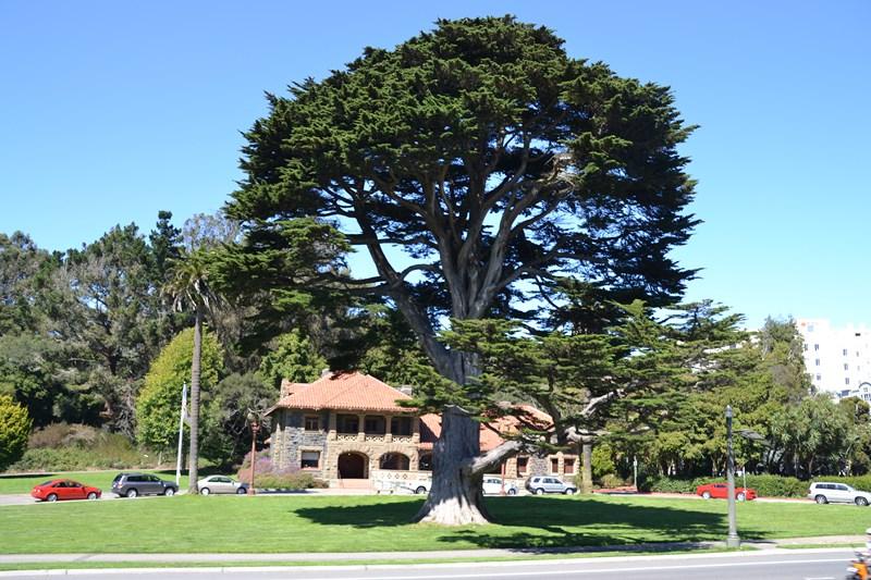 San Francisco Father-Son Trip 9-2013 (631) [800x600]