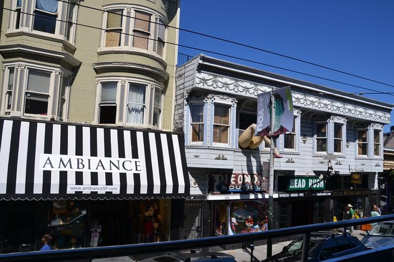 San Francisco Father-Son Trip 9-2013 (640) [800x600]