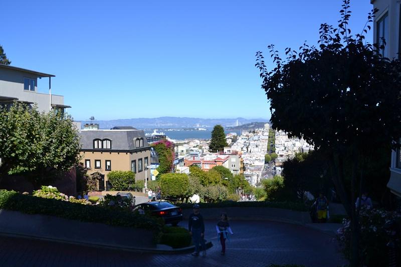 San Francisco Father-Son Trip 9-2013 (678) [800x600]