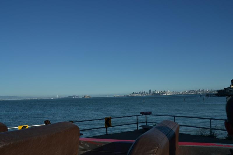 San Francisco Father-Son Trip 9-2013 (713) [800x600]