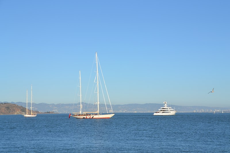 San Francisco Father-Son Trip 9-2013 (716) [800x600]