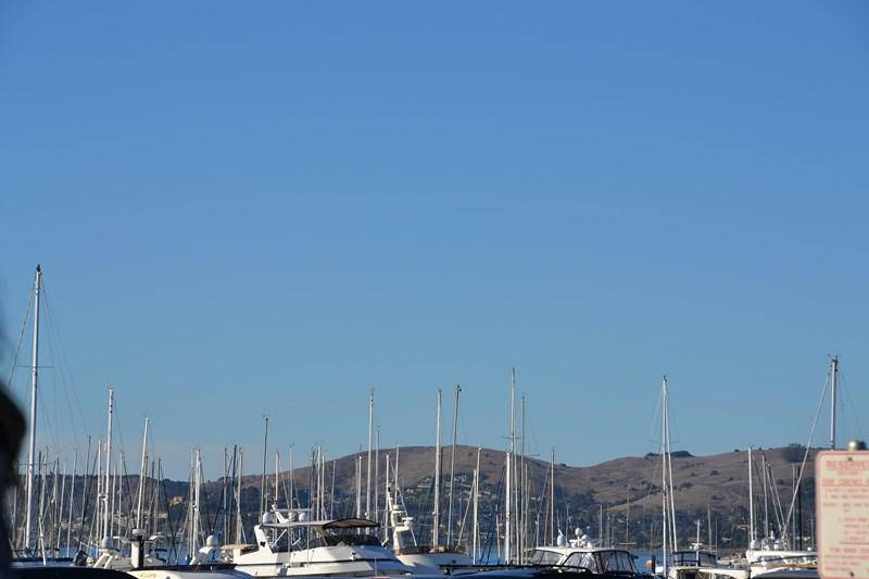 San Francisco Father-Son Trip 9-2013 (723) [800x600]