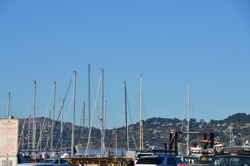 San Francisco Father-Son Trip 9-2013 (724) [800x600]