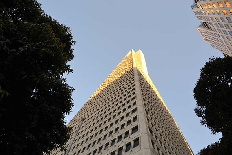 San Francisco Father-Son Trip 9-2013 (743) [800x600]