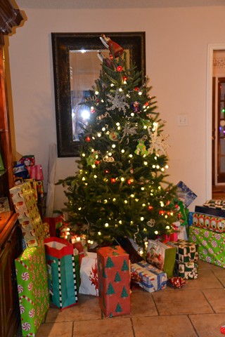 Christmas-2012-004-Copy