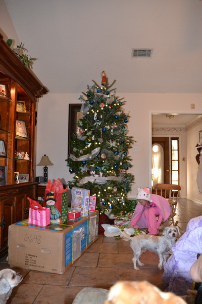 Christmas 2013 162