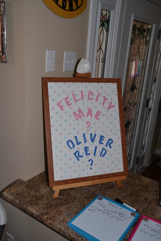 Ryan and Christina's Gender Reveal for Oliver 1-23-2016 (3)